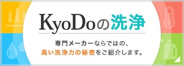 KyoDoの洗浄